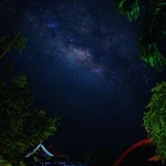 posecion-sulu-garden-at-night