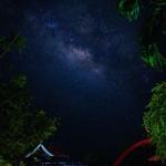 posecion-sulu-garden-at-night